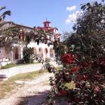 Das Frauenkloster in Agios Athanasios