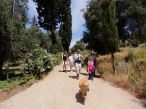 Der erste Mai ist Wandertag in Arillas