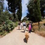 Vom Strand zur Brauerei – Am ersten Mai wird der Arillas Trail eröffnet